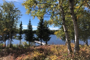 Tuktegweik Bay Lake View From Cabin